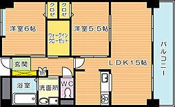 ラフィーネ20[6階]の間取り