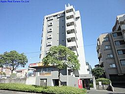 サクシード浅川[501号室]の外観