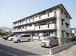 セジュール藤井[202号室]の外観