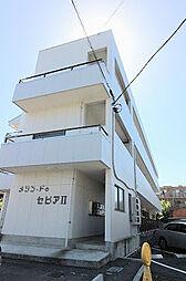 メゾン・ドゥ・セピアII[3階]の外観