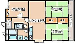 兵庫県神戸市灘区楠丘町1丁目の賃貸マンションの間取り