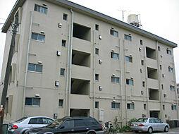 サンフラワーマンション[203号室]の外観