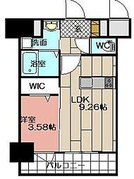 THE HILLS KOKURA[1105号室]の間取り