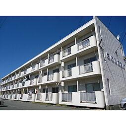 長野県伊那市狐島の賃貸マンションの外観