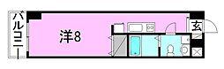 カローラ東雲[907 号室号室]の間取り
