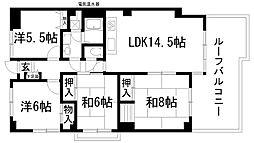 兵庫県川西市寺畑2丁目の賃貸マンションの間取り