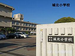 [一戸建] 兵庫県姫路市八代東光寺町 の賃貸【/】の外観