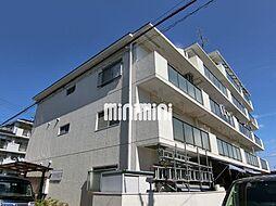 サンハイツ松井[4階]の外観