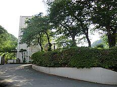 浅川中学校934
