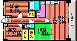 岡山県岡山市南区福成2丁目の賃貸マンションの間取り