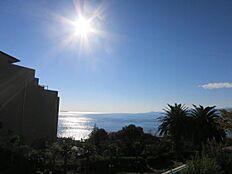 お部屋からの眺望です。伊豆大島、初島を望みます。