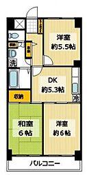 千葉県松戸市樋野口の賃貸マンションの間取り