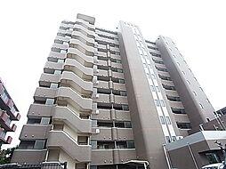 スタークレスト[12階]の外観