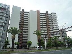 堺市堺区中安井町3丁