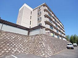 Courtひらき坂(コートヒラキザカ)[4階]の外観