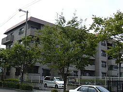 ハイツライラック[4階]の外観