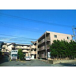 フィネス山田橋[209号室]の外観