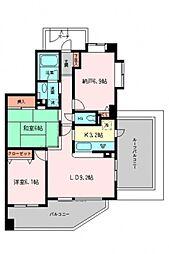 コスモ志村坂上パークビュー[6階]の間取り