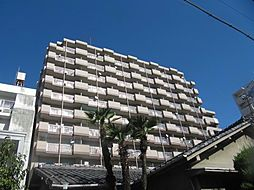 第13オーシャンビル[9階]の外観