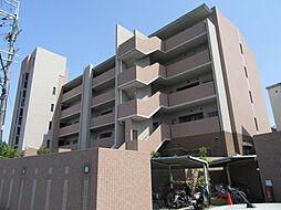 バウムドルフ[5階]の外観