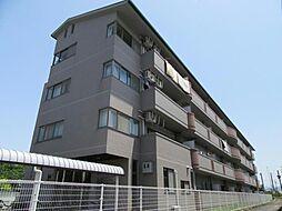 アルボーレヴィラ[4階]の外観