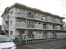 野白ガーデンハイツ[3階]の外観