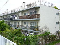 東京都葛飾区金町3丁目の賃貸マンションの外観