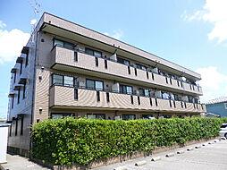 新潟県新潟市西区ときめき西1丁目の賃貸アパートの外観