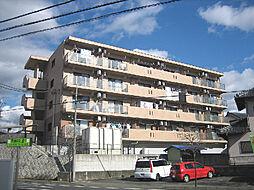 パレ・ソレイユ[3階]の外観