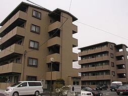 レアールパル[502号室]の外観