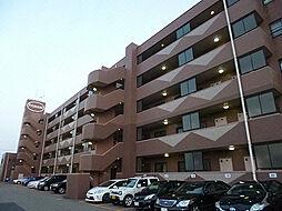 プライムローズ紫竹山[4階]の外観