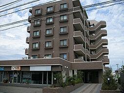 リファーレ新和[4階]の外観