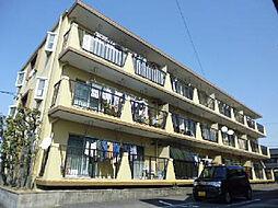 愛知県安城市住吉町7丁目の賃貸マンションの外観