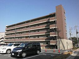 Chez-soi TATSUMI III番館[5階]の外観