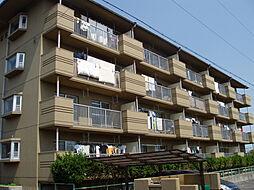 ハイツ塚本[2階]の外観