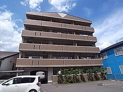 Belle SOCIA[5階]の外観