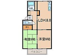 メゾンルミエールC棟[1階]の間取り