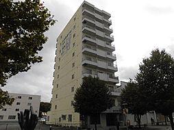 ウインザー8・8[8階]の外観