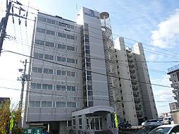 ビッグバーンズマンション[5階]の外観