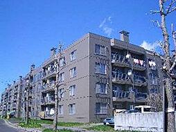カムイ24B[4階]の外観