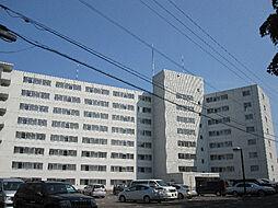 ロイヤルレインボー平岸B棟[2階]の外観