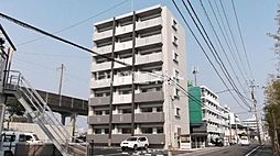 micori (ミコリ)
