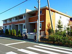 Maison 桜