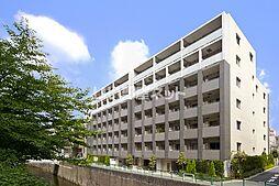 西武新宿線 下落合駅 徒歩5分の賃貸マンション