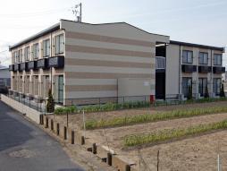 津駅 3.1万円